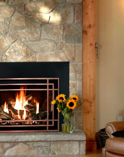 Fireplace Showcase Mendota Full View Insert