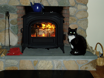The Fireplace Showcase Reviews, MA, RI - Pellet Stove Reviews