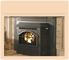 Fireplace Stoves Inserts Gas Wood Pellet Ma Ri Swansea Seekonk