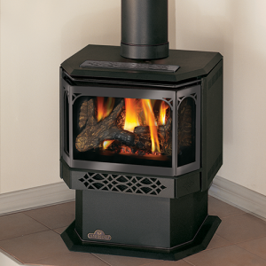 Napoleon Gas Stoves Direct Vent Stoves The Fireplace Showcase Ma Ri